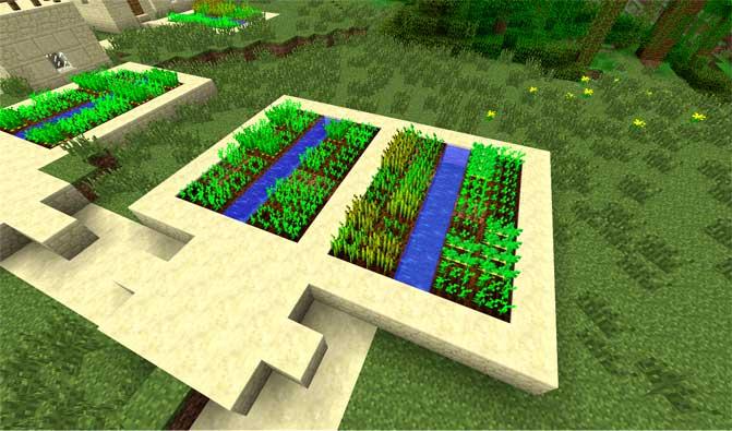 cultivos minecraft